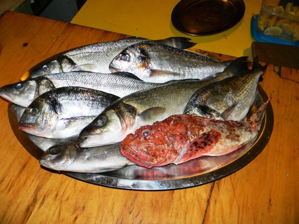 Riba i plodovi mora Konoba Skojera