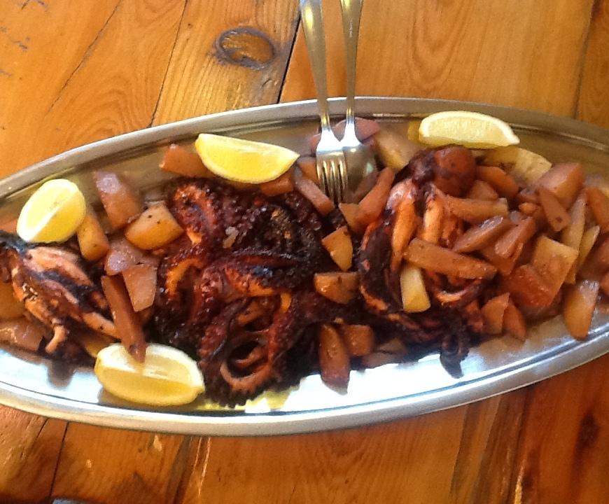 Adriatic Octopus under Peka
