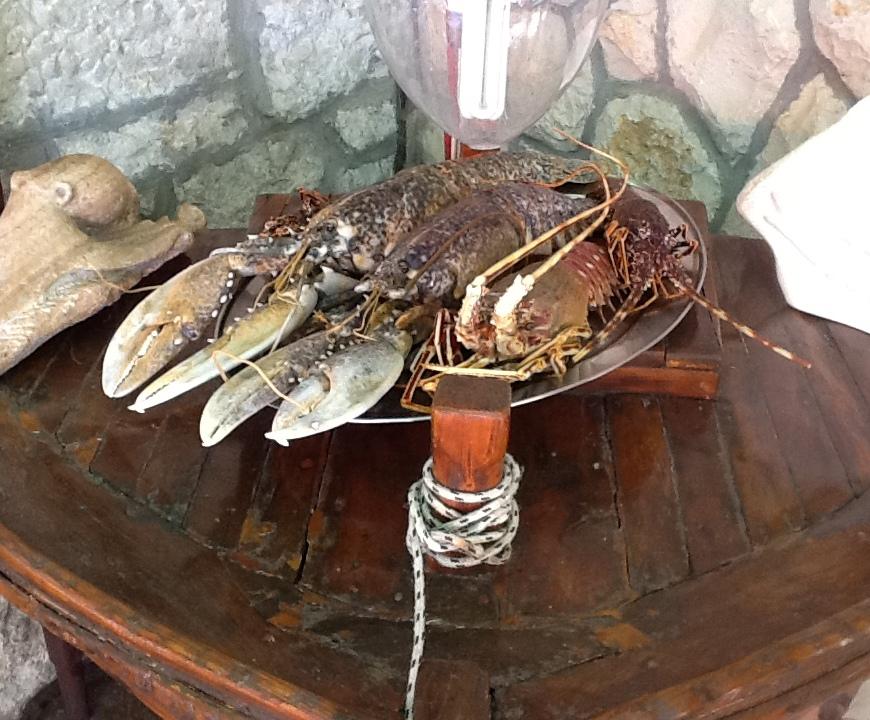 grilled lobster konoba skojera stari ribar