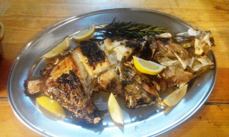 konoba skojera trpanj restaurant restoran stari ribar
