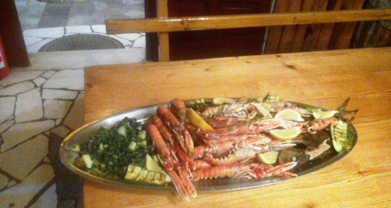 restaurant trpanj daily special