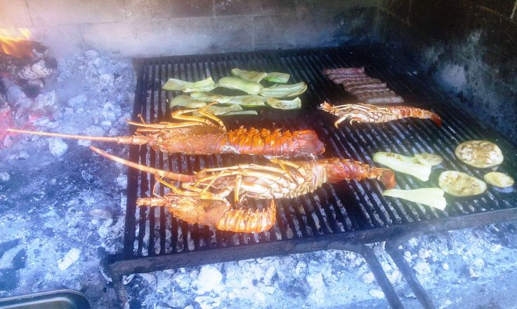 grilled lobster restaurant trpanj